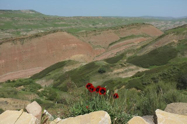 Давид-Гареджи, пейзаж